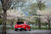 Mazda3 under cherry blossom trees in Toronto